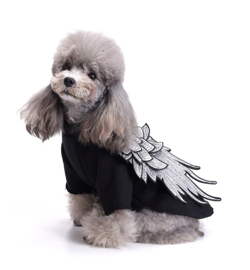Dog clothes wings pet Sweater autumn puppy apparel